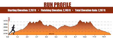 st-george-run-profile